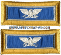 us army colonel military intelligence shoulder straps