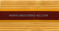 US Army Transportation Corps Cap / Sleeve Braids