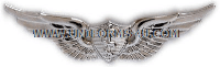 army flight surgeon badge