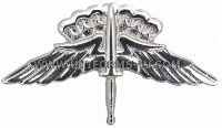 army freefall jumpwings badge