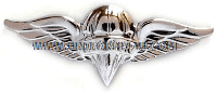 army pararigger badge anodized