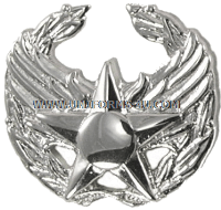 USAF Commander's Insignia Badge