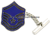air force tie tack / clasp master sergeant