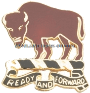 US Army 10th Cavalry Regiment unit crest