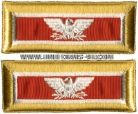 us army colonel signal shoulder straps