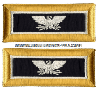 us army colonel judge advocate shoulder straps