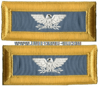 us army colonel infantry shoulder straps