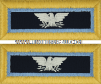 us army inspector general shoulder straps