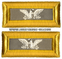 us army colonel finance shoulder straps
