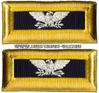 us army colonel chemical shoulder straps
