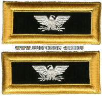 us army colonel chaplain shoulder straps