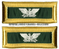 us army colonel special forces shoulder straps