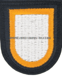 us army 101 airborne division flash
