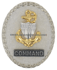 Coast Guard Silver Badge Command Chief (E7)