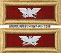 us army colonel logistics shoulder straps