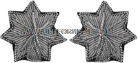 U.S. Army Lieutenant Colonel Embroidered Bullion Rank Insignia