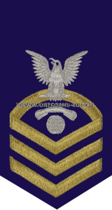 uscg e7 information systems technician (it) blue rating badge