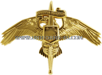 usmc marine marsoc marine corps forces special operations command badge