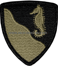 us army 36th engineer group Patch