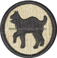 us army 81st army reserve command Patch
